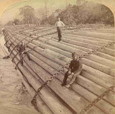 The mighty log rafts of the old new world – tough work – tough men Old Pictures, Old Photos, Timber Logs, Asian History, British History, Columbia River, Big Tree, Fairy Houses, Rafting