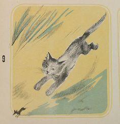 Animalarium: Sunday Safari - Cat & Mouse Romain Simon