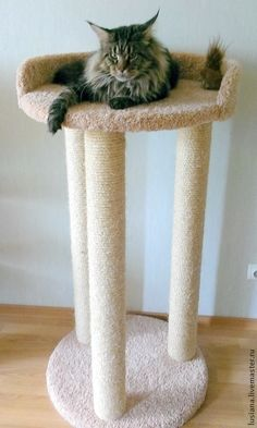 Furniture With Free Delivery Cat Fence, Dog Crate Furniture, Diy Dog Crate, Cat House Diy, Diy Cat Tree, Cat Towers, Cat Stands, Cat Scratching Post, Cat Scratcher