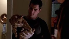 """Nick (George Eads) finds a ginger tabby cat which may help link the victims of some murders in the CSI: Crime Scene Investigation episode """"$35K O.B.O."""" (2001)."""