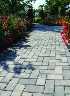 Holland Stone pavers look naturally aged, yet they're ultra durable. It's the perfect combination for any walkway. See all of our Toscana Antiqued pavers at Nicolock.com