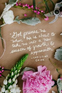 There are seasons in your life you think will never end! They are less than exciting to be in and almost always painful. God is removing things that you can not take into the future that He has for you. You can surrender to Him or fight it. Either way you will be Pruned!