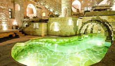 cool pool. Love the bridge!