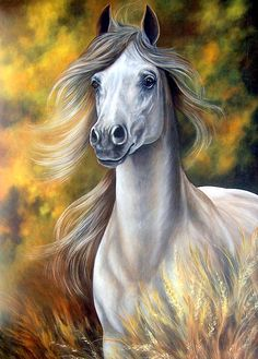 Celese by Glenda Stevens Gorgeous white horse painting.  See this image and many others featured on Facebook: https://www.facebook.com/pages/Amazing-Art-and-Artists/755691297800619?ref=hl  Follow us on Facebook: https://www.facebook.com/mindingmyvisions and our website: www.mindingmyvisions.com