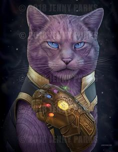 'Daryl Dixon Cat' T-Shirt by Jenny Parks Funny Cat Memes, Funny Cat Videos, Funny Cat Pictures, Funny Cats, The Avengers, Thor Marvel, Cute Little Animals, Baby Animals, Super Cat