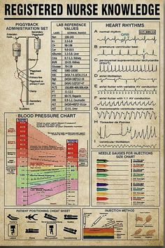 Survival Life Hacks, Survival Prepping, Emergency Preparedness, Survival Skills, Charting For Nurses, Nursing Notes, Medical Information, Anatomy And Physiology, The More You Know