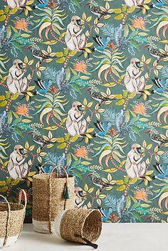 Canopy Creature Wallpaper