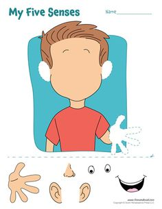 A set of free five senses worksheets / 5 senses craft for preschool and elementary school teachers 5 Senses Craft, Five Senses Preschool, 5 Senses Activities, My Five Senses, Preschool Learning, In Kindergarten, Toddler Activities, Preschool Activities, Teaching