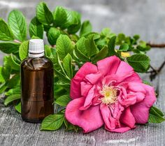 Find out how to use the best 9 essential oils for sunburn treatment. Make your own essential oil blend with my recipes and read more about the 5 natural remedies for sunburn relief. Essential Oil For Sunburn, Rose Essential Oil, Best Essential Oils, Wasp Repellent, Anti Ride Naturel, Sunburn Remedies, Peppermint Oil, Diy Skin Care, How To Increase Energy