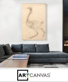Ready-to-hang Studies of the Human Body - Superficial Anatomy of the Shoulder and Neck 1510 Canvas Art Print for Sale canvas art print for sale.