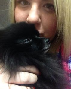 This is the best part of da day. Morning kisses and snuggles with mommy  may not be da best pic but I love it. What's your favorite part? #Pom #pomeranian #yegpets #yegpoms #instadogs #pomeranianpage #goingfor1k #poshpamperedpets #dog_features #thedailypompom #dogfeaturing #dogsofinstaworld #lacyandpaws #cutiepatootie #mabelle #blackpom #barkleythepomsquad #2016 #pawsandpaws #pomeranianpage #cutestdogintheworld #niceandbright #cutelittleface  #furrendsupclose #kisses #snuggles #goodmorning…