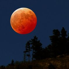 Cool Pictures | Cool Stuff: Moon Pictures
