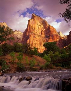 Virgin River in Zion National Park - Photograph by Tom Till