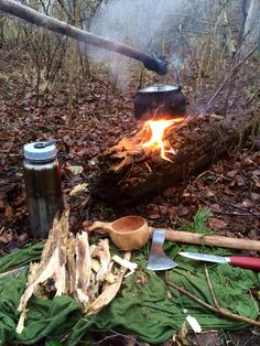 Brewing pinetea over fatwoodfire