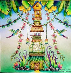 Resultado de imagem para selva mágica johanna basford