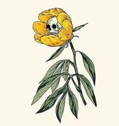 digital art illustration sketch flower poppy and skeleton skull Art Sketches, Art Drawings, 7 Arts, Arte Sketchbook, Skull Art, Dark Art, Art Inspo, Painting & Drawing, Art Reference