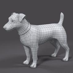Topology dog