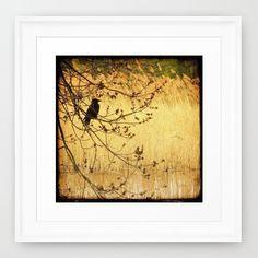 Dreaming of Spring Framed Art Print 305cm x von friederikealexander, $39,00