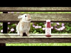 another advert with a rabbit in it Innocent Drinks, Bunnies, Smoothies, Rabbit, Cute Animals, Water Bottle, Advertising, Tasty, Fruit