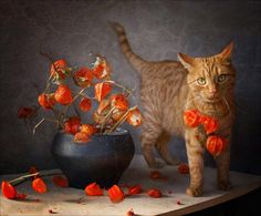 Cat with poppies. BRIGHT MORNING: Sunday Chats