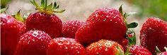 Dieta para desintoxicar el cuerpo y adelgazar