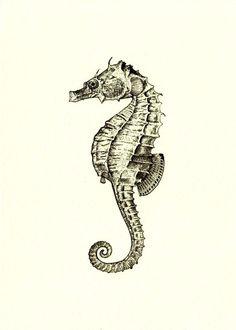 Seahorse print on eBay | Seahorses | Pinterest | Romantic, Print ...