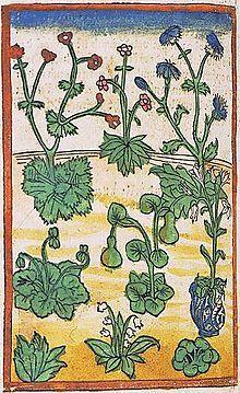 List of florilegia and botanical codices