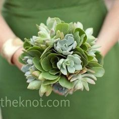 Green Succulent Bouquet    For A Monochromatic Look, The Bridesmaids Carried All-green Succulent Bouquets.