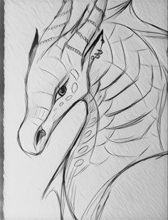 Coolest Dragon ever Animal Sketches, Animal Drawings, Drawing Sketches, Fantasy Creatures, Mythical Creatures, Dragon Sketch, Dragon Drawings, Wings Of Fire Dragons, Creature Drawings