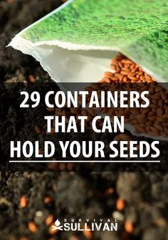 Seed Starting Over two dozen containers that can hold your seeds for gardening and survival purposes. Pick the right one to keep moisture away from your seeds. Dome Greenhouse, Indoor Greenhouse, Greenhouse Ideas, Cheap Greenhouse, Container Plants, Container Gardening, Organic Gardening, Gardening Tips, Gardening Supplies