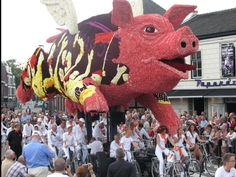 "Corso Valkenswaard Reisvenne Oranje 2014  ""When pigs fly"""