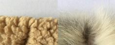 """How to avoid being duped by fake """"faux fur"""" made from real dead animals"""