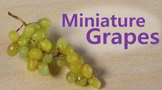 Racimos de uvas en miniatura. ¡Paciencia!