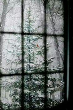 #inverno #neve