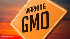 (NaturalNews) What is it about a requirement to label foods containing genetically modified ingredients that so scares the food industry that they would do anything to prevent that from happening? …