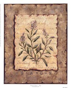 Vintage+Herbs-Sage
