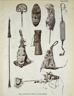 über die wissenschaftlichen Ergebnisse der deutschen Grenzexpedition in das westliche Kaiser-Wilhelmsland 1910