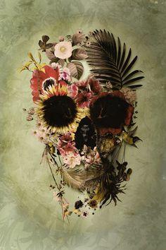 Ali Gulec - Garden Skull Light                                                                                                                                                                                 Plus