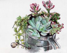Succulent Plant Painting Print from by TheColorfulCatStudio, $12.00
