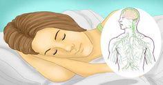 En la práctica médica ayurvédica, el sistema linfático es el primero en recibir…