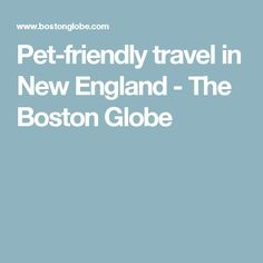 Pet-friendly travel in New England - The Boston Globe