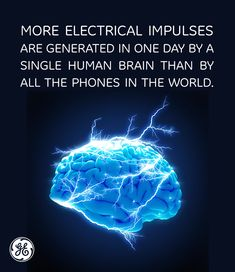 More electrical impulses are generated in one day by a single human brain than by all the phones in the world.