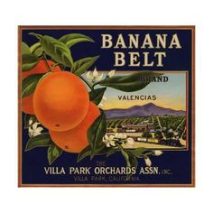 Villa Park Banana Belt Orange Citrus Crate Label Art Print - Planes, Trains and Automobiles Fruit Crate Label Art Prints - Fruit and Vegetable Crate Label Art Prints Vintage Labels, Vintage Ads, Vintage Posters, Orange Crate Labels, Label Art, Vegetable Crates, Villa Park, Hilario, Happy Colors