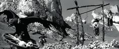 """""""Rękopis znaleziony w Saragossie"""" (1964)"""