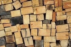 Photo gratuite: Bois, Texture, Écorce, Plantes - Image gratuite sur Pixabay - 1350175