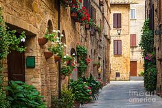 Country Photograph - Pienza Street by Inge Johnsson