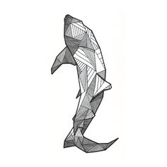 Whale Shark Sketch
