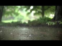 lonely drops - YouTube Relaxing Rain Sounds, Rain Sounds For Sleeping, Relaxing Gif, Relaxing Music, Calming Music, Epic Thunder, Rain And Thunder Sounds, Nocturne, Asmr