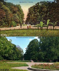"""(zač. 18. stor. – pol. 19. stor. nem. Bruck(en)au, Bruck(en)-Au(g)e(r)l – """"(medzi)mostový lužný les(ík)""""; pol. 19. stor. nem. in der Au – """"v lužnom lese"""" ;cca 1867 – cca 1921 nem. Aupark – """"lužný/nivský park"""", maď. Ligeti díszkert; cca 1921 – 1932 Petržalské sady; 1932 – 1945 Tyršove sady) v Bratislave je najstarší verejný park v strednej Európe a jeden z najstarších stredoeurópskych parkov vôbec. Nachádza sa v bratislavskej Petržalke medzi Starým mostom a Novým mostom. Má rozlohu 42 ha. Bratislava, Golf Courses, Nostalgia, Sad"""