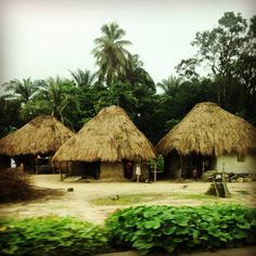 Thatch roof houses in Sierra Leone, West Africa.